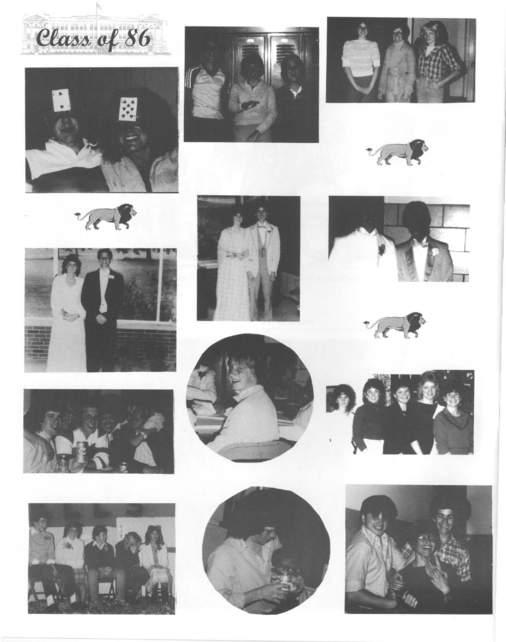 pg 10